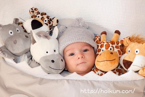 サイ・キリン・トラのぬいぐるみに囲まれる赤ちゃんは保育園に通園しています。